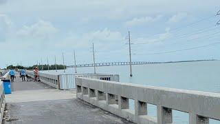 Bridge Fishing 🎣 Islamorada, FL