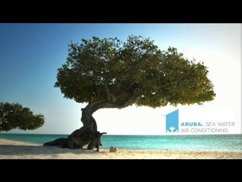 Aruba Seawater Air Conditioning Project Full Info documentary