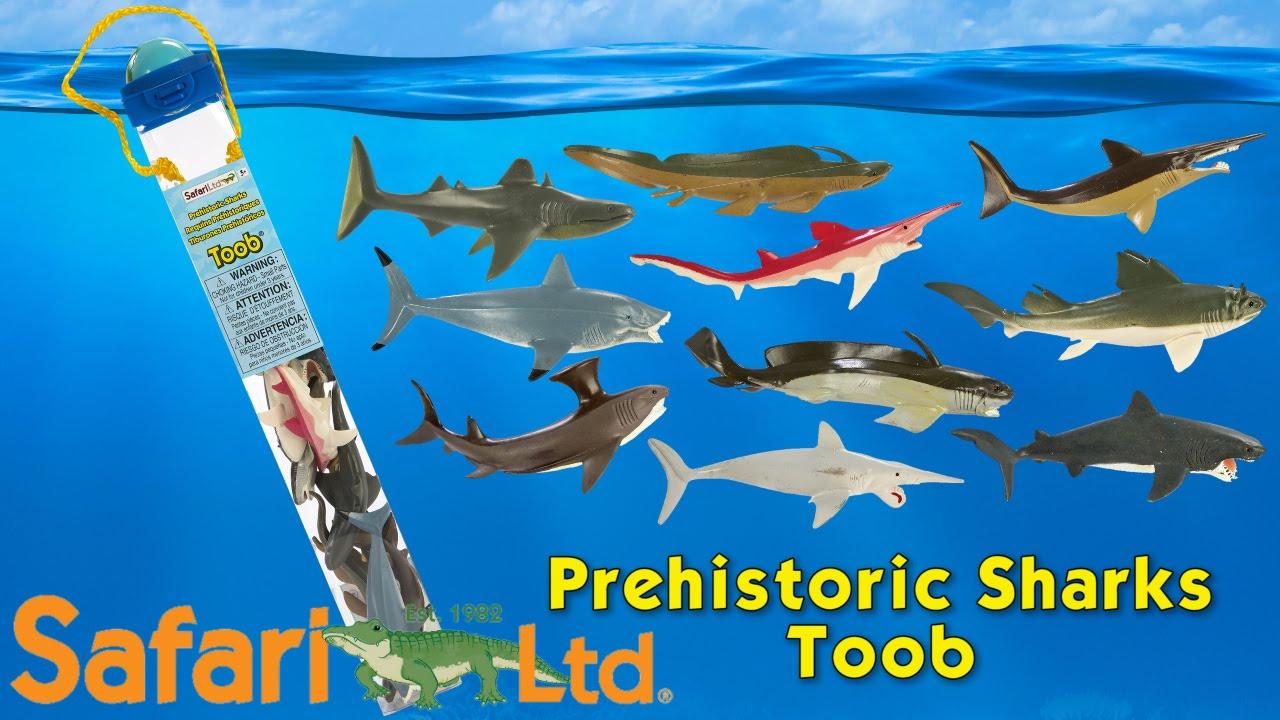 Safari Ltd Prehistoric Sharks Toob Youtube