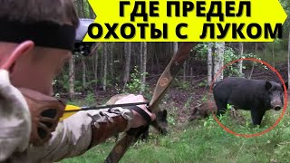 Где придел охоты с луком? / Where is the limit of hunting with longbow?