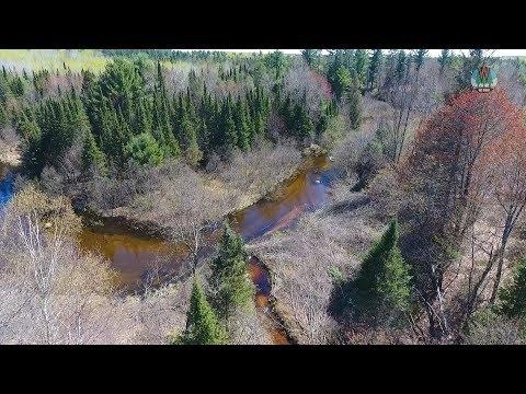 Woodboro Lakes Wildlife Area: A Great Addition