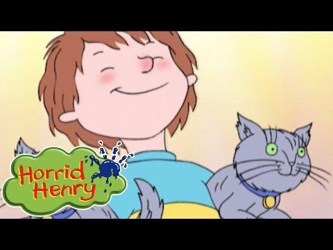 Horrid Henry - Pet Sitting | Cartoons For Children | Horrid Henry Episodes | HFFE