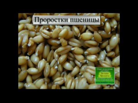 Мука пшеничная - калорийность и свойства. Состав и польза