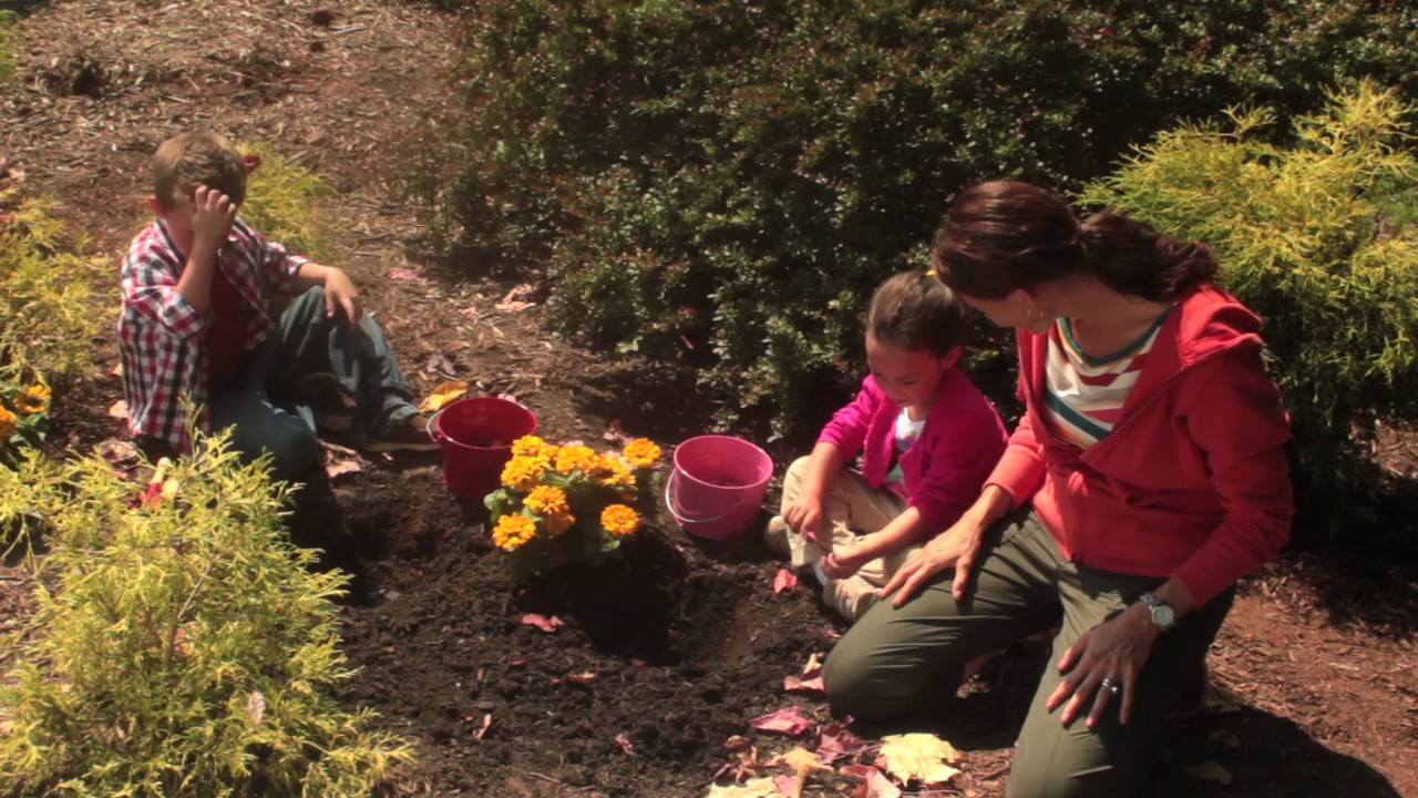 Planting tulips with kids - YouTube