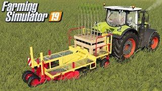 Sadzenie drzew - Farming Simulator 19 | #11