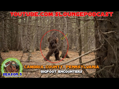 Bigfoot Encounters from Cambria County, Pennsylvania - SLP507