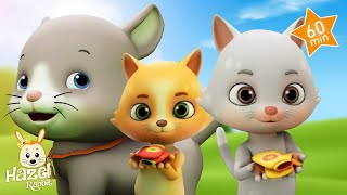 Kids Songs : The Baby Cat + More Nursery Rhymes for Children