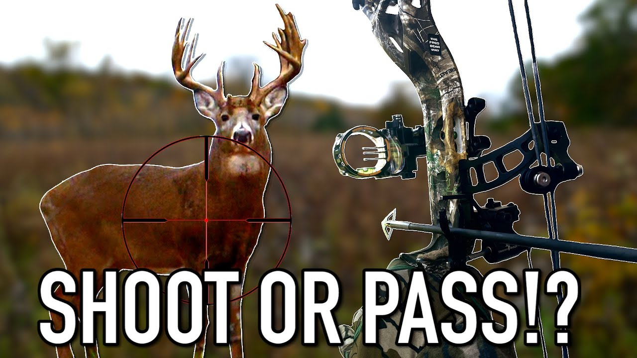 QUARTERING TO SHOTS!!! - Should YOU Take Them or Not?? | Bowhunting Deer