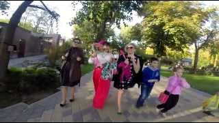 Розовая свадьба! 10 лет Нашей семье!(, 2014-10-12T16:56:06.000Z)