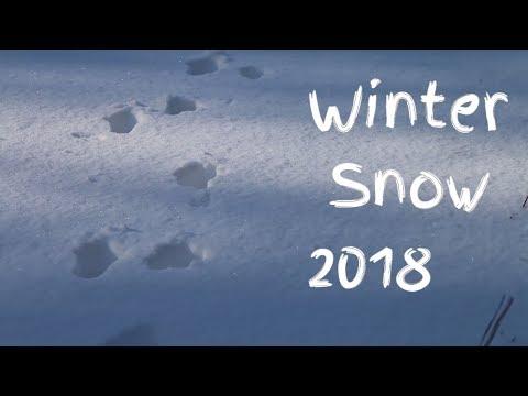 Winter Snow Jacksonville NC 2018