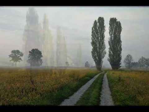 Раїса Кириченко - Тополина земля
