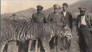 آخر 5 مشاهد وصور لحيوانات انقرضت ولم تعد موجودة