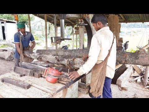 Unlimited Black Teak Wood Slice Cutting at Lumber Sawmill।Wood Cutting at Running Saw Blade in Asia
