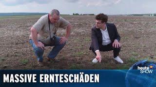 Mäuseplage auf den Feldern! Lutz van der Horst reist ins Krisengebiet