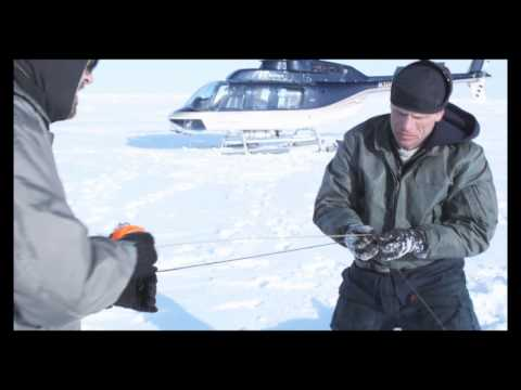 Polar Bear Research on Chukchi Sea