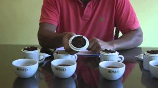 In this episode Dananjaya Silva talks about Ceylon teas most famous...