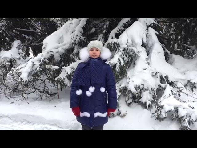Изображение предпросмотра прочтения – АринаУльбашева читает произведение «Снег да снег» А.А.Блока