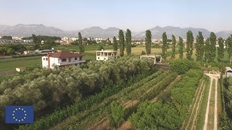 Agriculture in Albania: Meeting EU standards