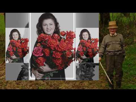 IRINA LOGHIN - La o margine de sat - 1992 (Of, mi-e draga lumea)