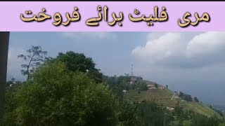 Murree Flats|Murree Flat For Sale|The Info Point