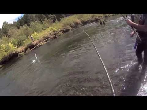 Catching king salmon Washington HD
