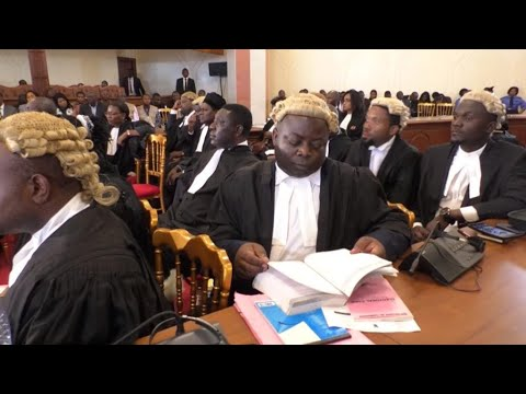 Cameroon's constitutional court hears post-election litigati