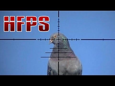 Slow Motion Airgun Pigeon Hunting #13