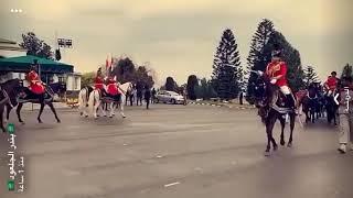 ولي العهد يصل القصر الرئاسي الباكستاني على مركبة تجرها الفرسان