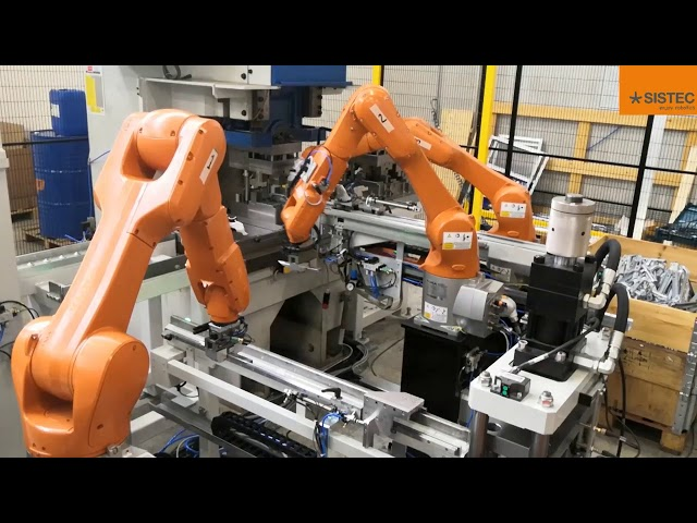 Impianto robotizzato di stampaggio - Robotic moulding system