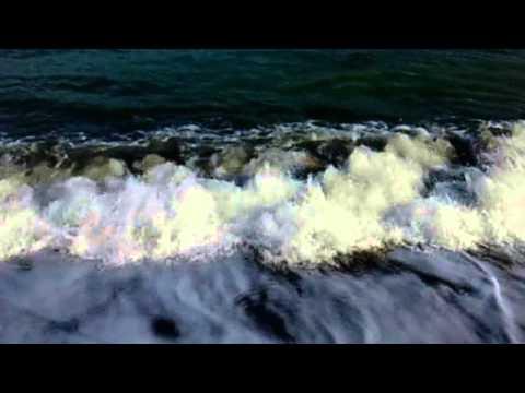 морская рыбалка камбалы на черном море