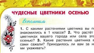 Окружающий мир 2 класс, Перспектива, с.82-85, тема урока «Чудесные цветники осенью»