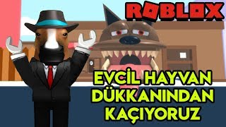 we're escaping from a 🐶 Pet Shop 🐶   Escape The Pet Store Obby   Roblox English