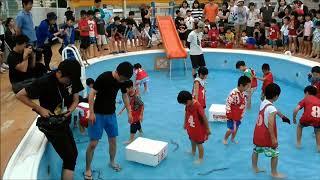 2018 6/10 閉校した若宮小学校プール 魚つかみ体験