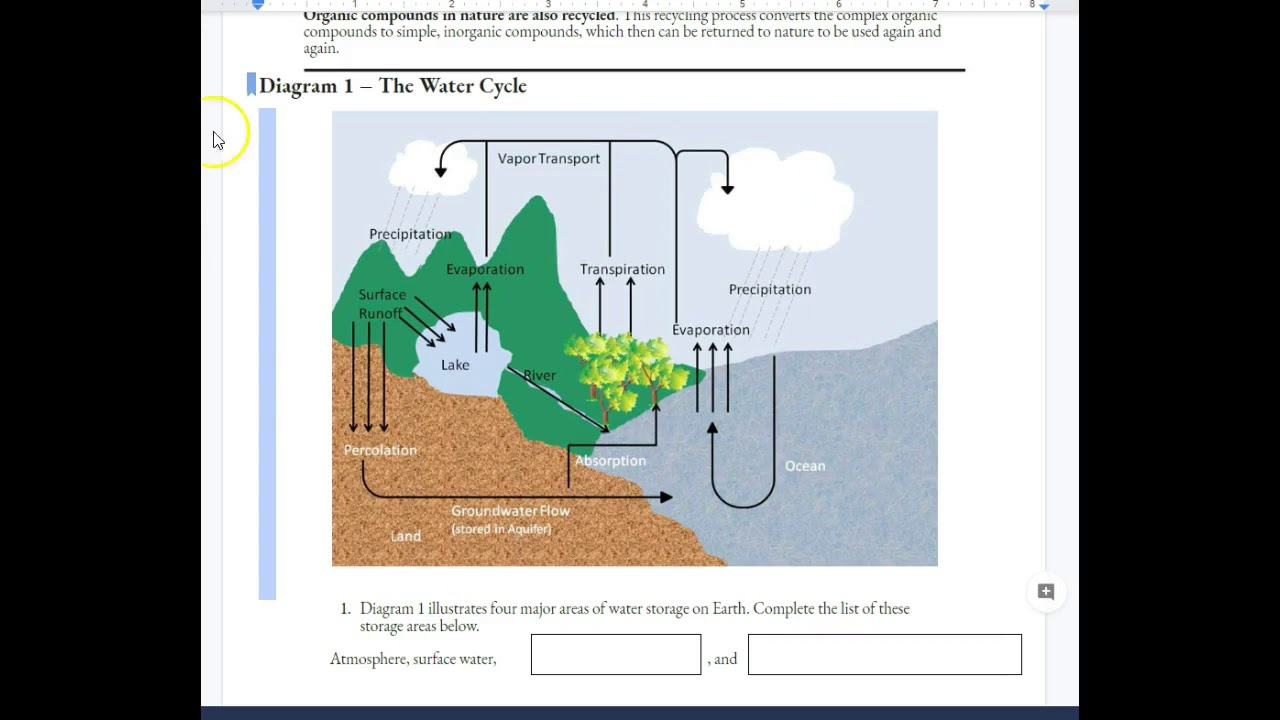 Nutrient cycle POGIL - YouTube Intended For Nutrient Cycles Worksheet Answers