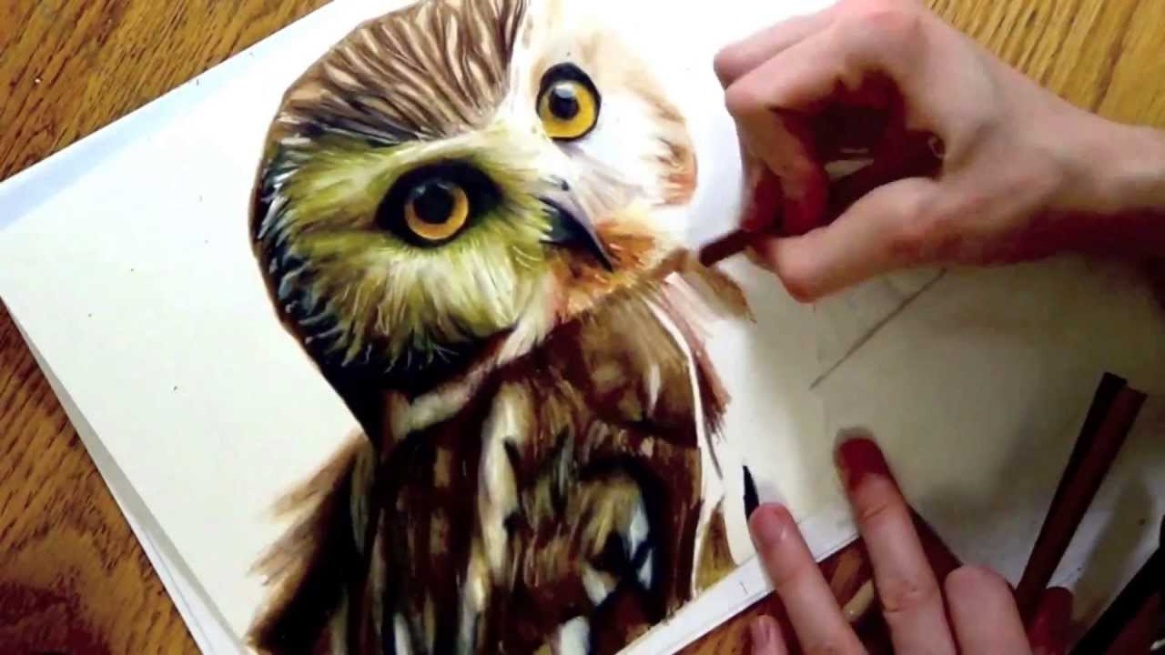 Realistic Drawing Of An Owl