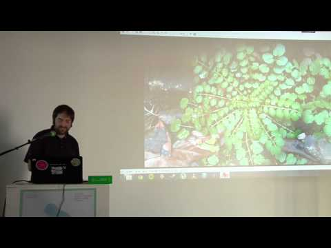 Ed Key: Flora and fauna of South Cambridgeshire (A MAZE. Indie Connect 2013, Berlin)
