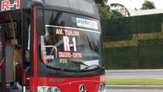 Cancun Buses