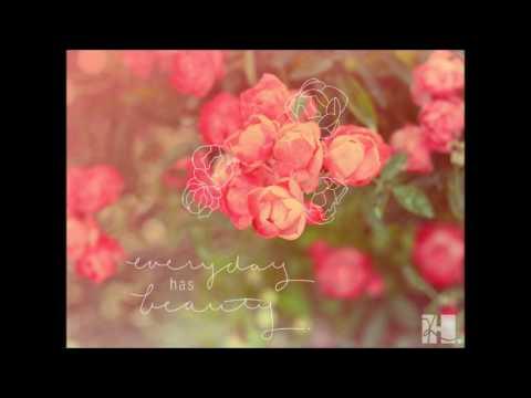 com47 - Rosy days