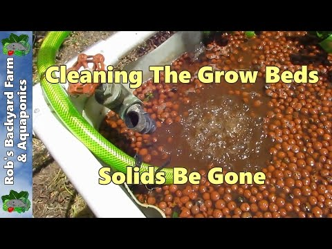 Cleaning Aquaponic grow beds. Solids be gone..