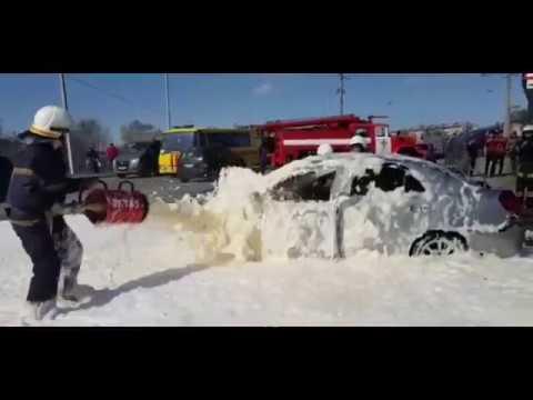 В Павлограде машина врезалась в дерево и загорелась