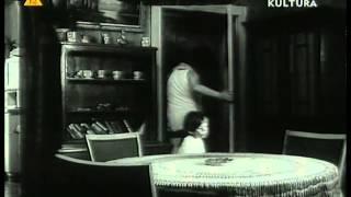 Meta 1971