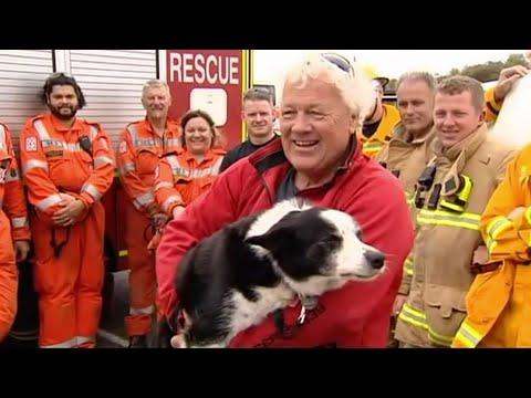 Associated Press: Daring dog rescue in Australia
