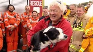 Daring dog rescue in Australia
