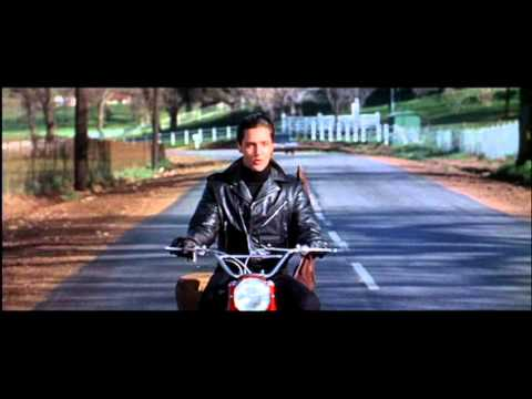 Popular Videos - Roustabout