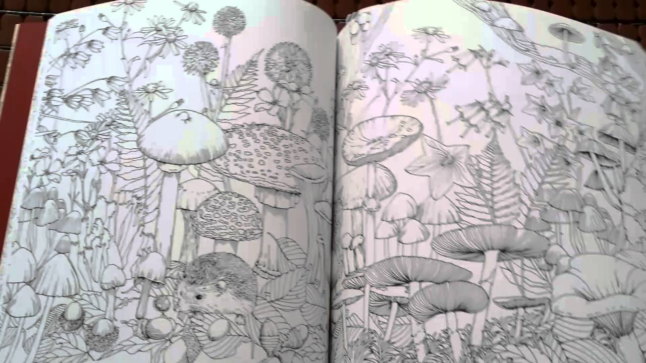 Rhapsody In The Forest Coloring Book YouTube