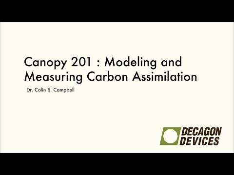 Canopy 201: Modeling and Measuring Carbon Assimilation by Plants