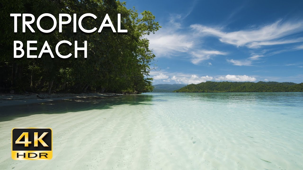 Tropical Island Beach Ambience Sound: Gentle Ocean Wave Sounds