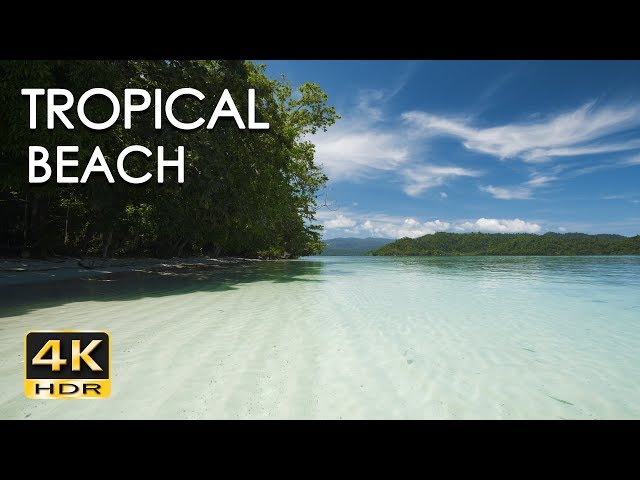 4K HDR Tropical Beach - Gentle Ocean Wave Sounds - Peaceful Wild Island - Relaxing Nature Video