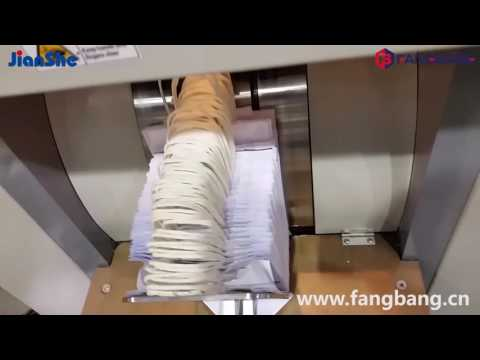 ZD-QFJ08 Fully Auto Roll-fed Paper Bag Machine (in Brazil)
