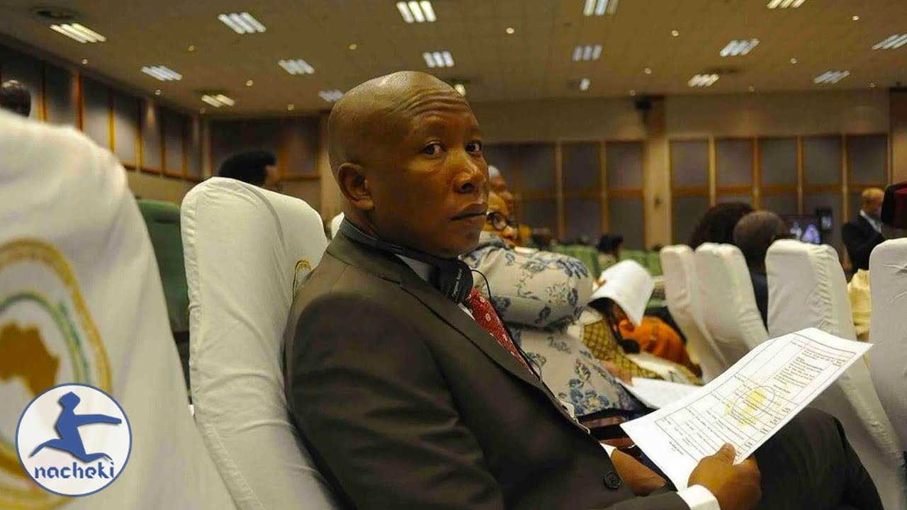 Julius Malema is Woke Wants a United Africa at Pan-African Parliament